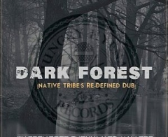 Warren Deep - Dark Forest (Native Tribe's Re-Defined Afro Remix) ft. Thexy LX, Jay Afro